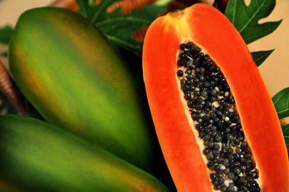 Apakah Pepaya Tumbuhan Asli Indonesia?