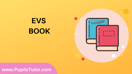 EVS Book in English Medium Free Download PDF for B.Ed 1st And 2nd Year / All Semesters And All Courses - www.PupilsTutor.Com