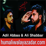 http://www.humaliwalayazadar.com/2017/10/adil-abbas-nowganvi-ali-shabbar.html