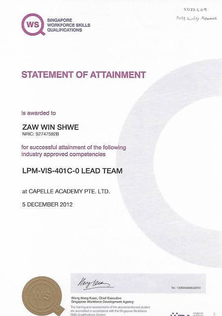 Certificate in Lead Team