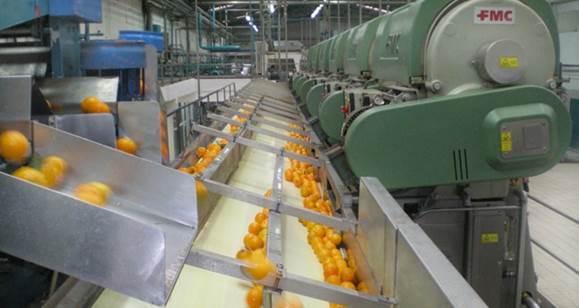 Ζητείται Γεωπόνος σε συσκευαστήριο της επαρχίας Άργους