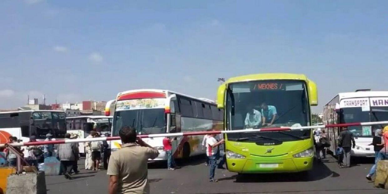 هـام جدا.. حافلات نقل المسافرين تتجهز للاستئناف العمل في هذا التاريخ (صور)