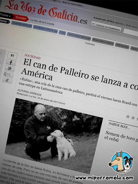 Can de Palleiro en la Voz de Galicia