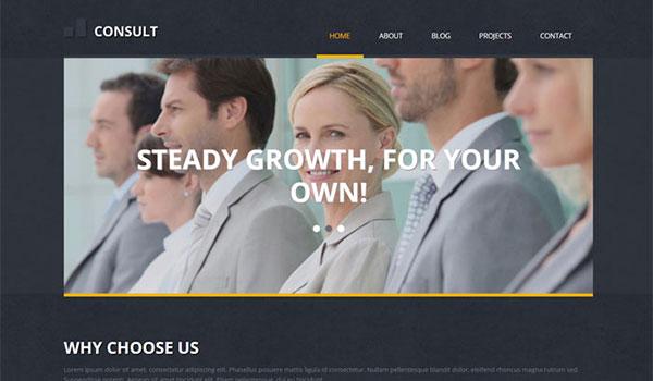 Consult-WordPress-Business-Marketing-Theme
