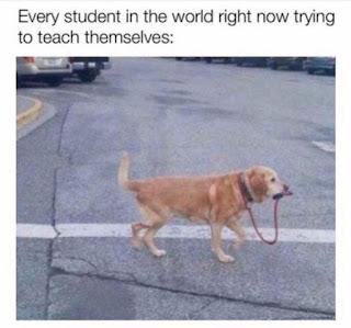 Online Classes Meme