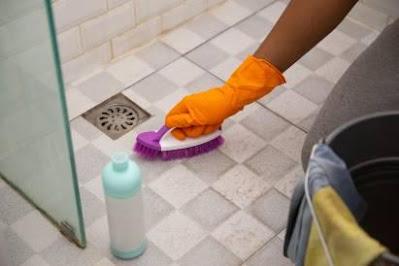 7 Cara Menghilangkan Cacing di Kamar Mandi, Lihat Yuk!