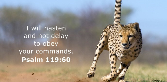 I will hasten and not delay to obey your commands.