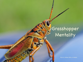 Seeds Of Destiny (SOD) Devotional, 28 October 2020 - The Grasshopper Mentality