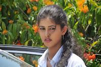 Actress Pavani Glamorous Photo Shoot HeyAndhra