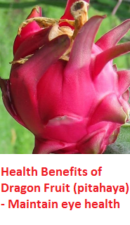 Health Benefits of Dragon Fruit (pitahaya) - Maintain eye health