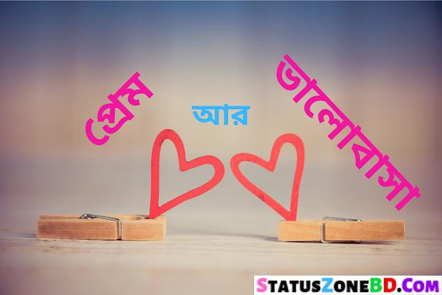 প্রেম আর ভালোবাসা দুইটা শব্দ কি এক? Bangla Choto Golpo