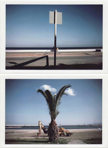 dirty photos - on the island of - DIPTYCH of tree and bulldozer at beach AND KIDS-LABEL