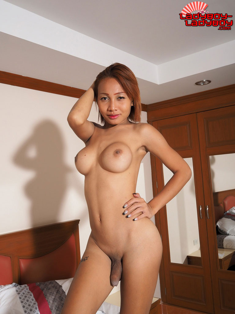 Asian ladyboy big tits-9375