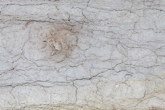 Free Marble Texture 4