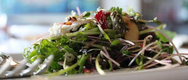 Salad_Microgreens