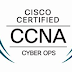 CCNA (Version 1.1) - CyberOps Final Exam Answers