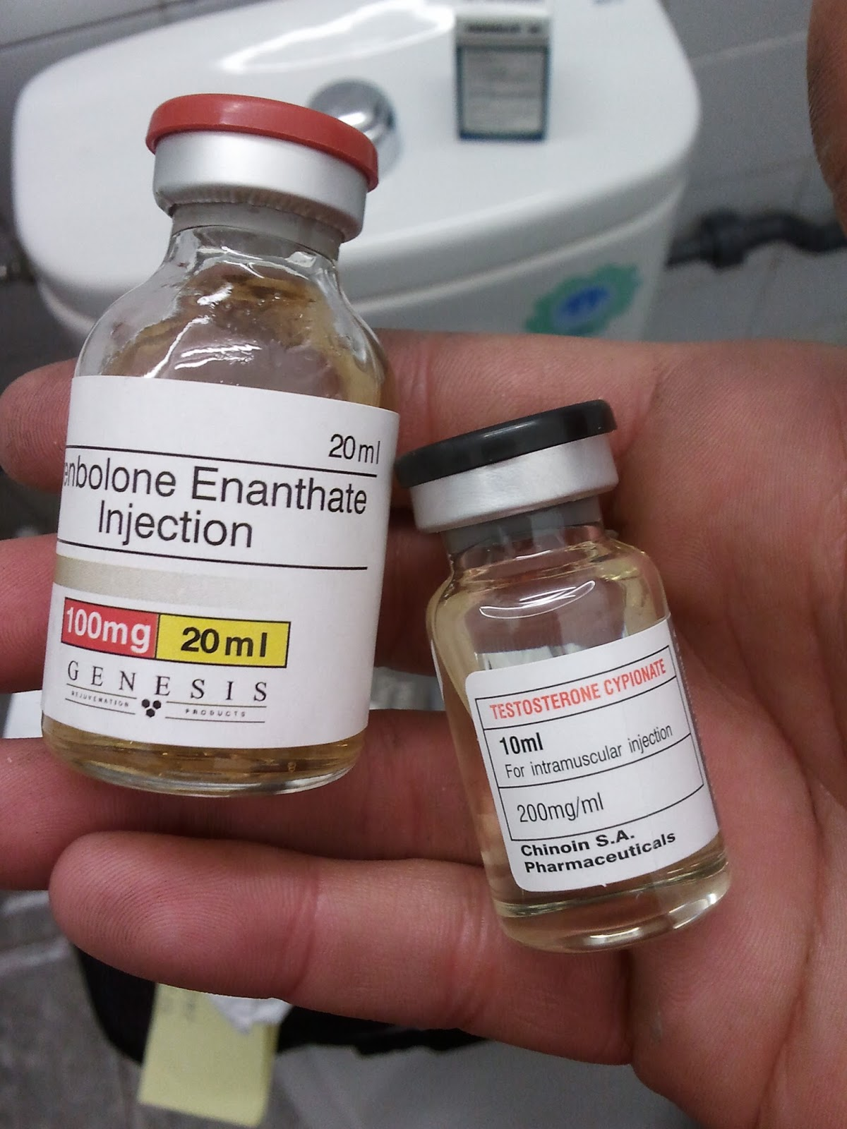 rexogin stanozolol injection