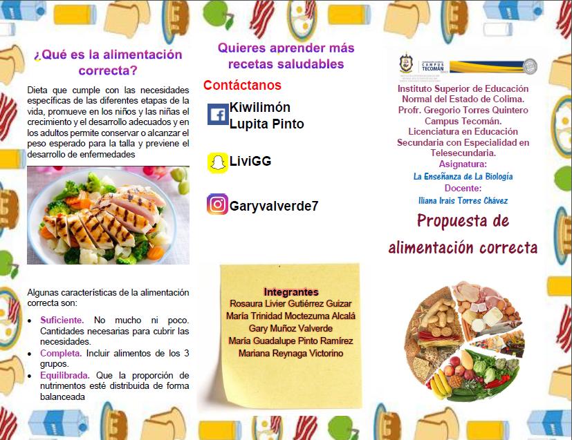 dieta correcta y caracteristicas