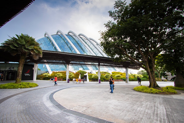 Flower dome-Gardens by the bay-Singapore