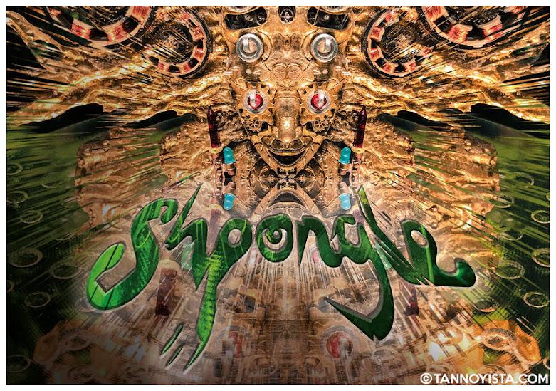 Image of Shpongle Codex VI