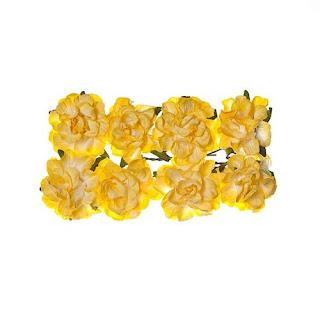fleurs-jaune