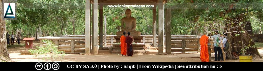 The Buddha statue and the Bodhi-tree shrine