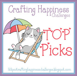 Top Pick~Anything Goes