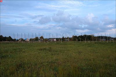 Налибокская пуща. Деревня Заборье