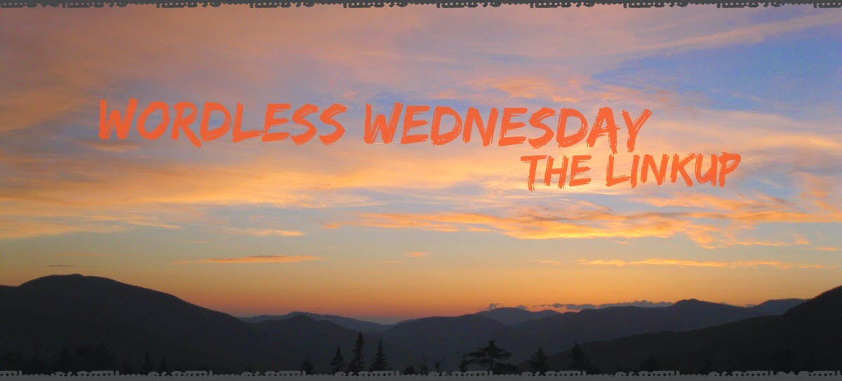 wordless wednesday linkup member The 3 Rs Blog