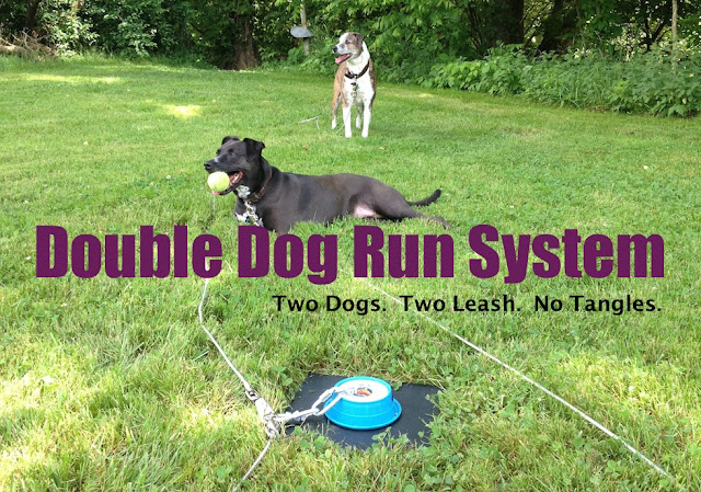Two Dogs Two Leashes No Tangles How To Tie Out Two