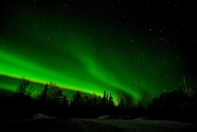 The Northern Lights dance above forests laden with snow in Santa's Lapland. Photo: VVV84.