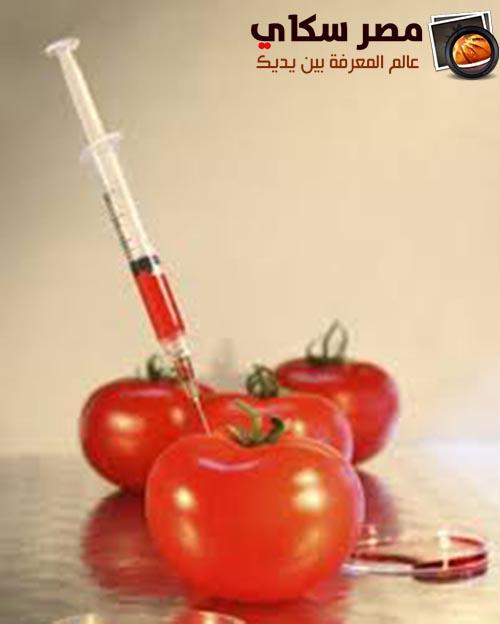 المواد الحافظة ومكسبات الطعم وأضرارها Preservatives and Flavors