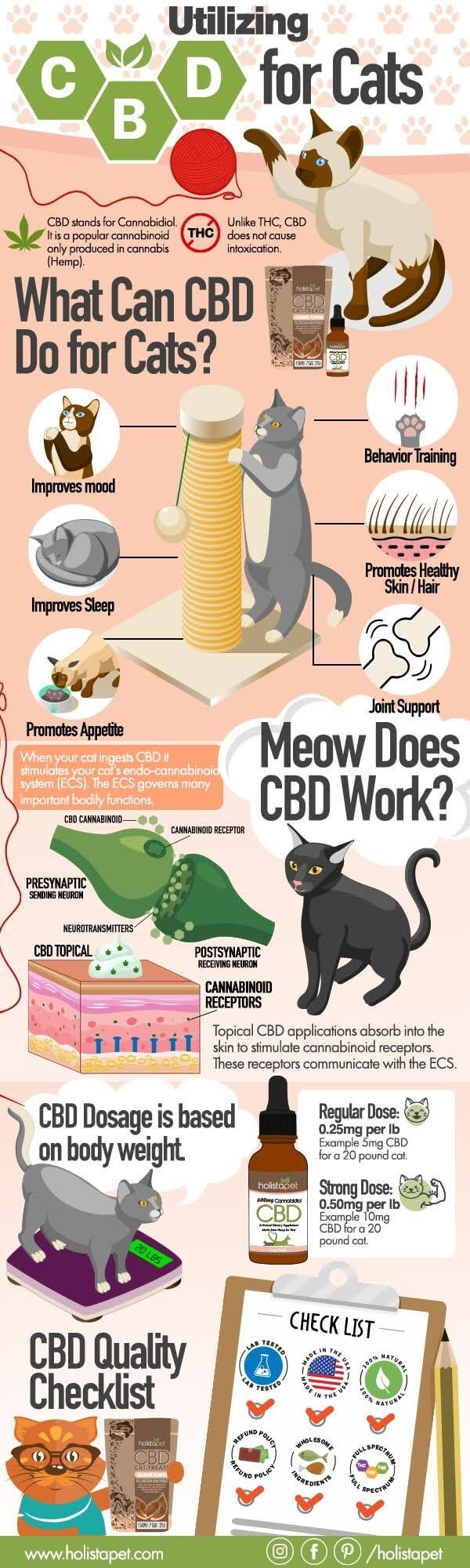 Utilizing CBD for Cats #infographic