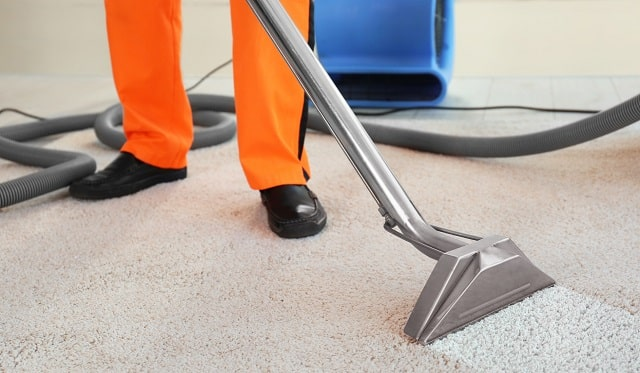 how to start a carpet cleaning business startup cleaner company