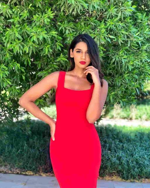 Sanjana Ganesan marriage photos
