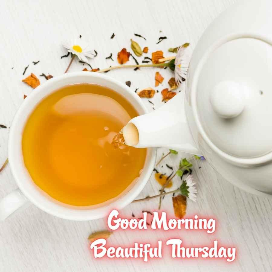good morning it's thursday
