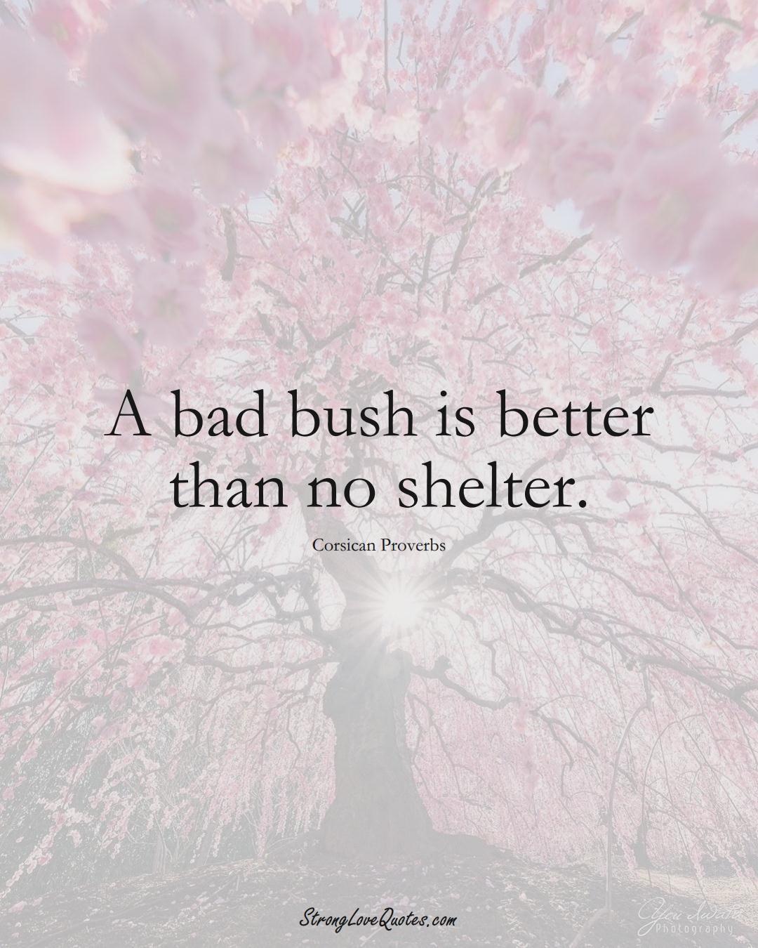 A bad bush is better than no shelter. (Corsican Sayings);  #EuropeanSayings