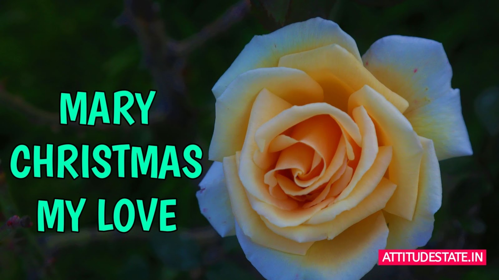 top Merry Christmas Images