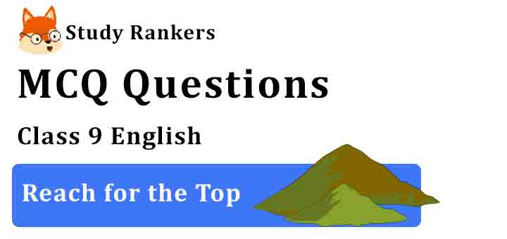 MCQ Questions for Class 9 English Chapter 8 Reach for the Top Beehive