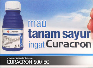Insektisida CURACRON 500EC berbahan aktif  Profenofos 500g/l