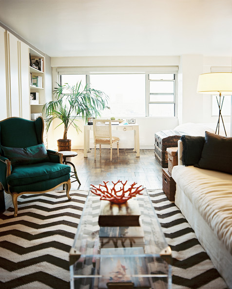the best chevron rug