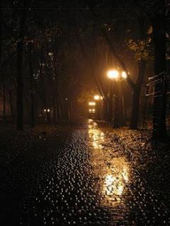Ночь, дождь и свет фонарей