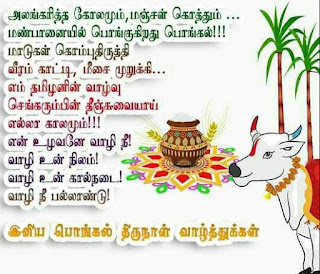 pongal images in tamil