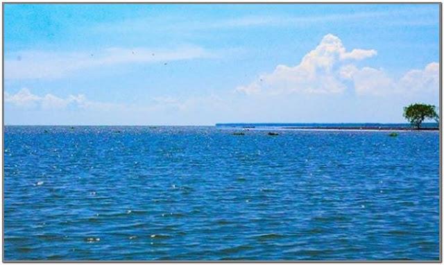 Teluk Permisan;10 Top Destinasi Wisata Sidoarjo;