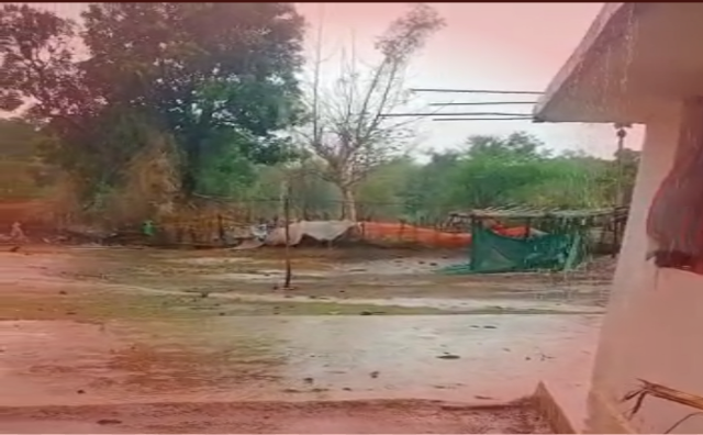 Satta khabar, first rain gariaband