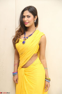 Nishigandha in Yellow backless Strapless Choli and Half Saree Spicy Pics 121.JPG