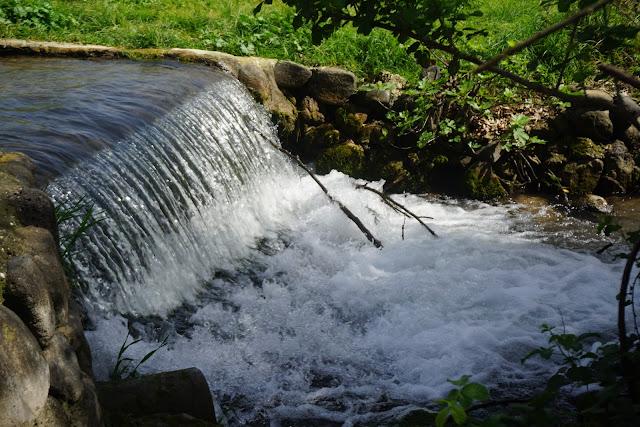 פלגי מים דן
