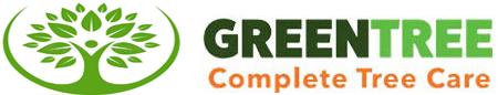 Cây xanh, Dịch vụ cây xanh
