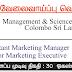 Vacancy In Management & Science Institute - Colombo Sri Lanka