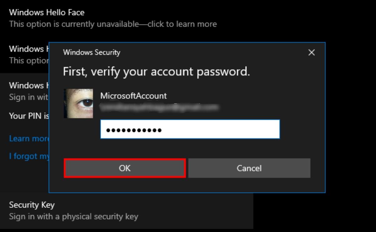 Windows - Microsoft Password